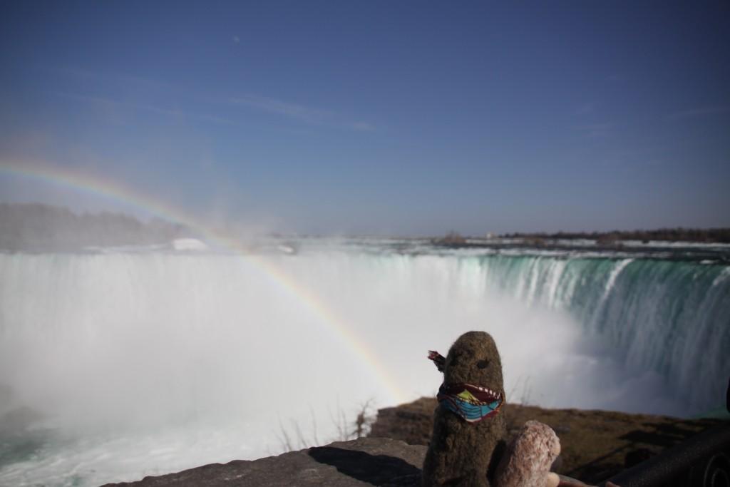 ZeMarmot aux chutes du Niagara