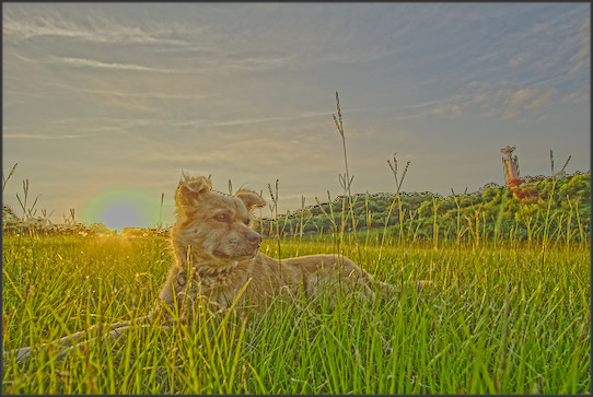 Exemple d'image HDR